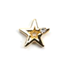 Metal Star Charm Gold-Crystal (Small)